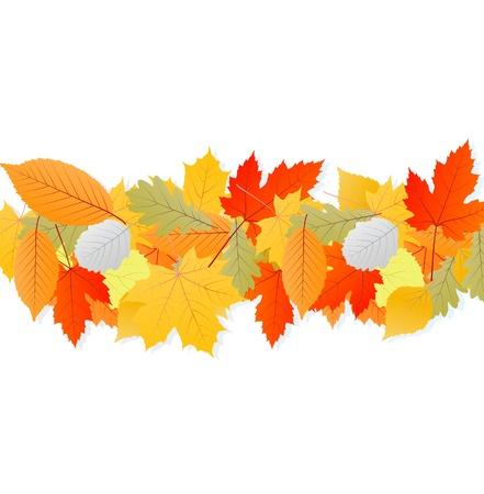 hojas parra: Hojas de otoño vector de fondo para el cartel