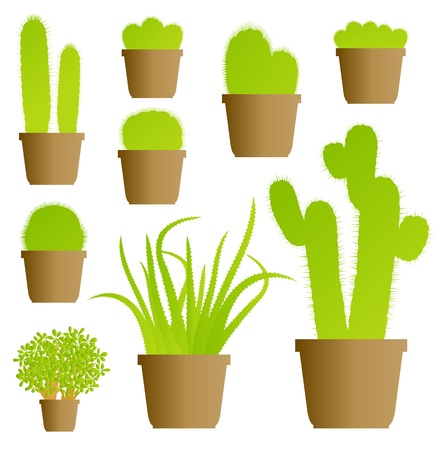 Cactus house plant set vector background for poster Vector