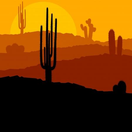 arizona: Cactus plants in Mexico desert sunset vector background Illustration