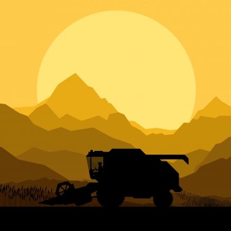 grain fields: Combine harvesting crop in grain fields background vector illustration Illustration