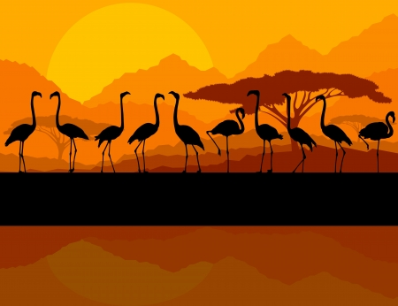 Flamingo vector background and sunset for poster Vector