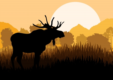 moose: Moose in wild nature landscape background illustration vector