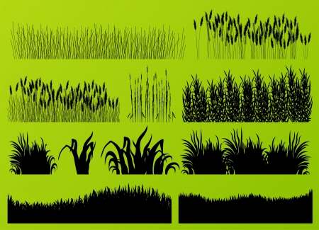 hay field: Plants, grass and flowers detailed silhouettes illustration collection background vector Illustration