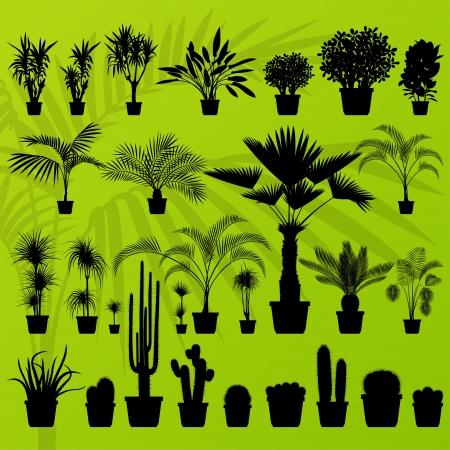 plantas del desierto: Planta ex�tica, arbusto, �rbol de palma y cactus detallada ilustraci�n de fondo vector colecci�n