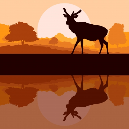 Deer in wild nature forest landscape background illustration vector Stock Vector - 16289082