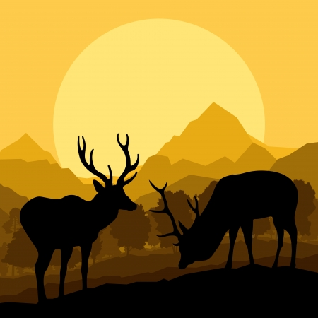 spring training: Deer in wild nature forest landscape background illustration vector