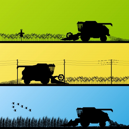 Combine harvesting crop in grain fields background vector illustration Stock Vector - 16289248