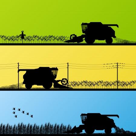 combinar: Combine la cosecha de los cultivos en los campos de grano ilustración vectorial de fondo