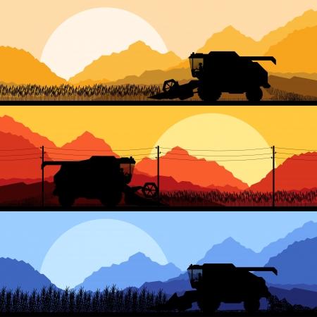 produits céréaliers: Combinez la récolte des cultures de céréales champs de fond de vecteur Illustration