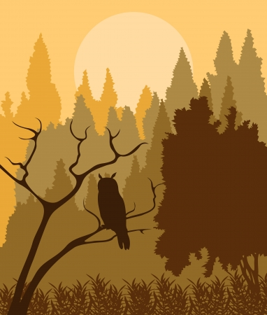 Owl in forest vector background for poster Stock Vector - 16289050