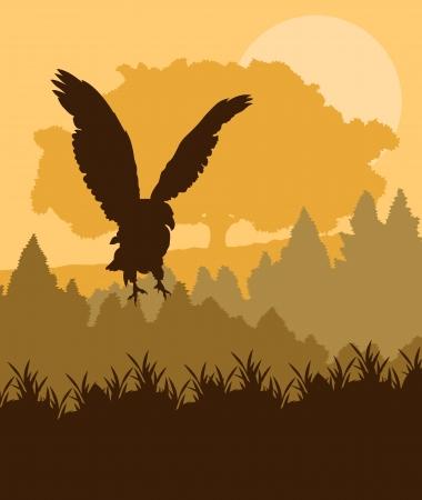 arbol alamo: Swooping �guila atacando en vectores de fondo forestal