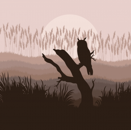 Owl in forest vector background for poster Vector