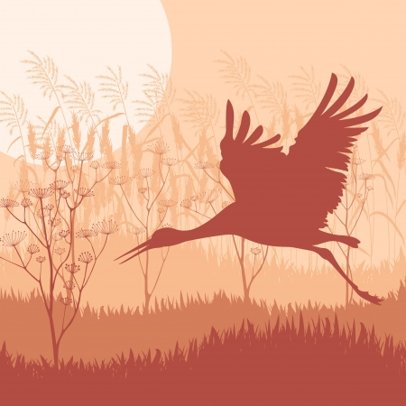 reeds: Crane flying in wild mountain nature landscape background