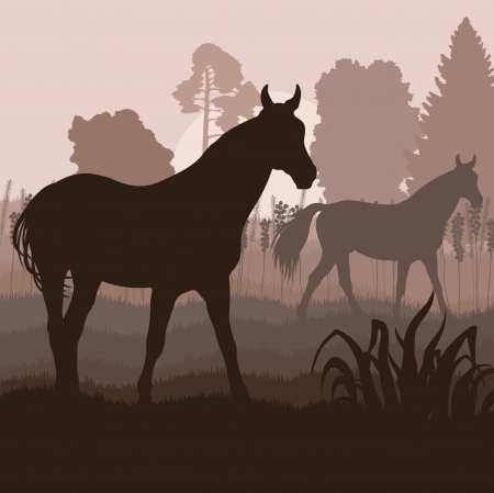 paddock: Horses in field vector background for poster Illustration