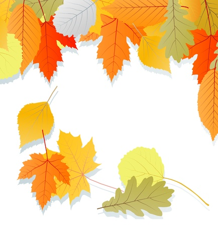 Leaves autumn vector background for poster or card Stock Vector - 16289129