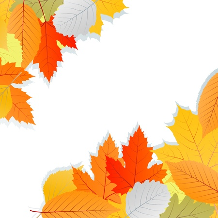 Leaves autumn vector background for poster or card Stock Vector - 16289132