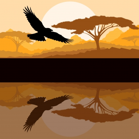 Eagle flying vector background with reflection in water Vector