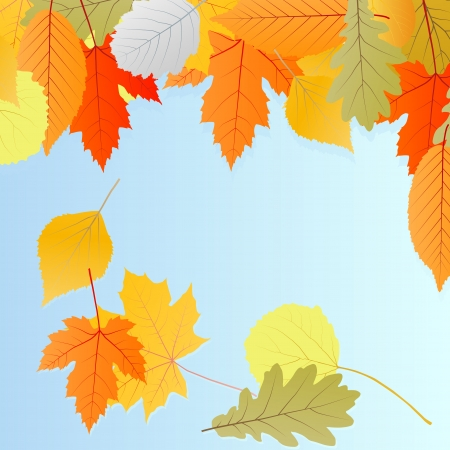 Leaves autumn vector background for poster or card Stock Vector - 16289128