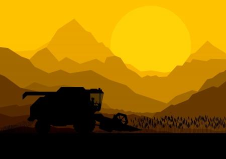 cosechadora: Combine la cosecha de los cultivos en los campos de grano ilustración vectorial de fondo