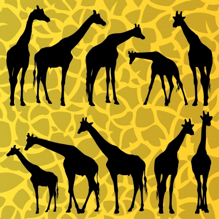 human skin texture: Giraffe detailed silhouettes illustration collection background vector Illustration