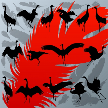 Crane bird and feathers detailed silhouette illustration Vector
