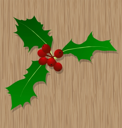 Holly berry Christmas symbol on wooden door for poster Vector