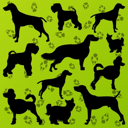 Dogs and dog footprints detailed silhouettes illustration collection background  Stock Vector - 16932467