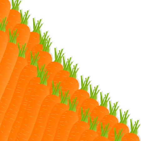 Carrot background ecology concept Stock Vector - 16932540