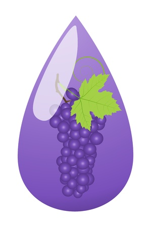 Grape juice green drop ecology concept background Stock Vector - 16932442
