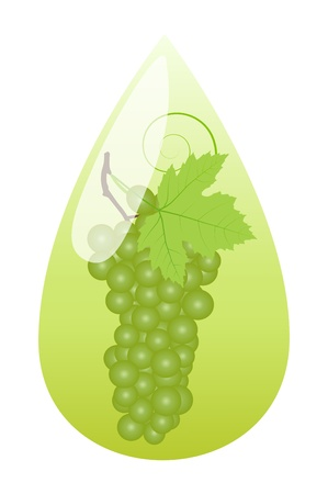 Grape juice green drop ecology concept background Stock Vector - 16932427