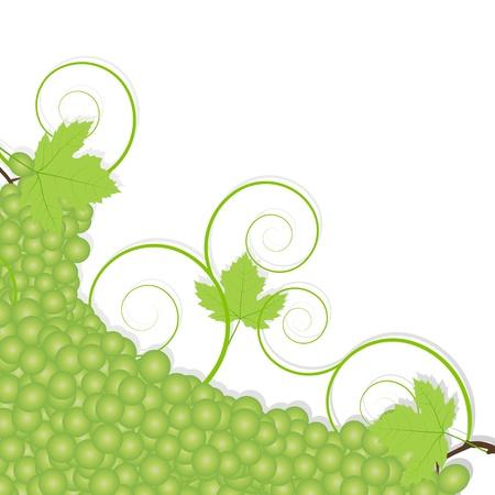 Grape background ecology concept Stock Vector - 16932440