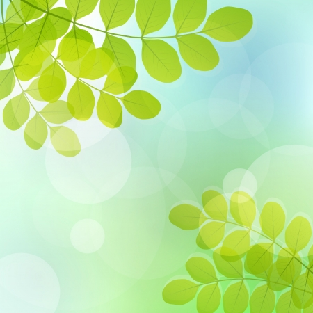 Fresh leaves and light glitter vector background Vector