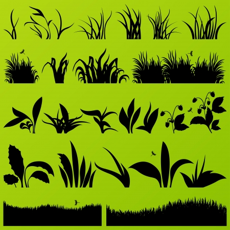 cutting grass: Grass and plants detailed silhouettes illustration collection background vector