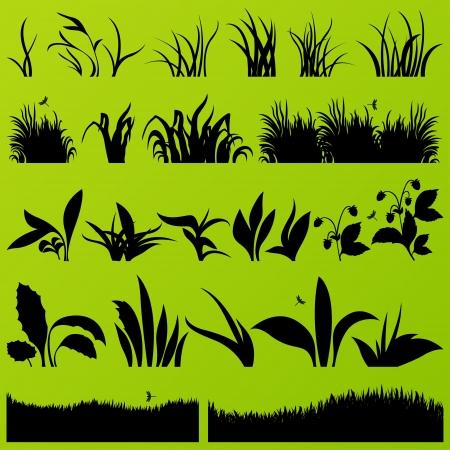 untamed: La hierba y las plantas de siluetas ilustraci�n detallada colecci�n de vectores de fondo Vectores