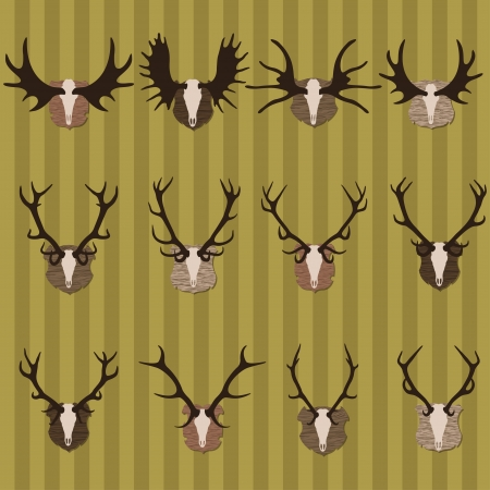 taxidermy: Deer and moose horns hunting trophy and coat of arms shields illustration collection background vector Illustration