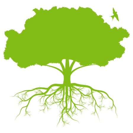tree symbol: Tree with roots background ecology vector concept
