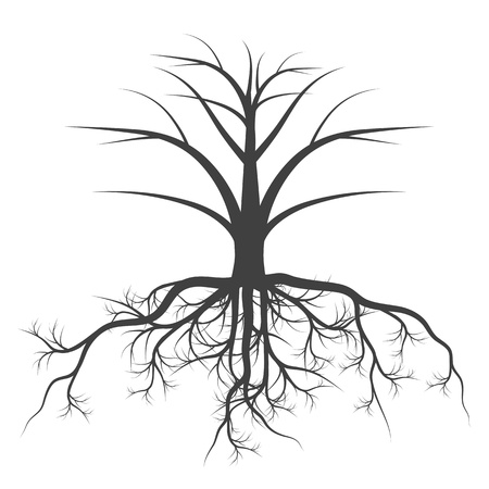 arbol raices: Árbol con raíces concepto de vectores de fondo para el cartel