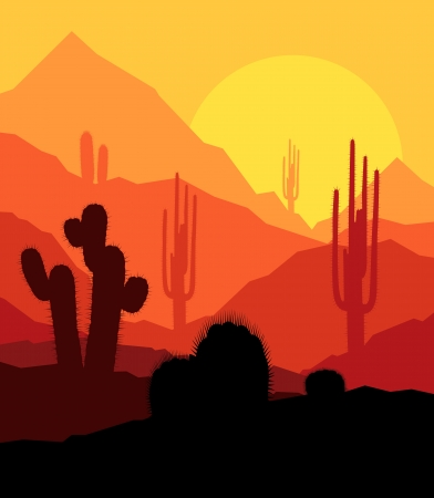 south western: Cactus plants in desert sunset vector background for poster Illustration