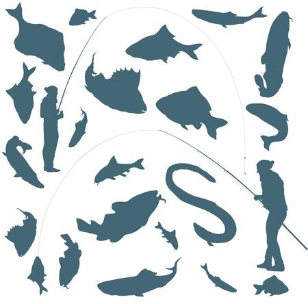 carp fishing: Pescatore e pesci vettore sfondo per il manifesto Vettoriali