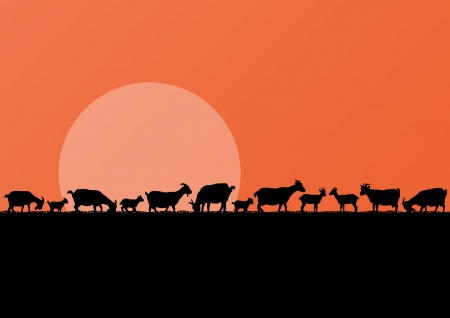 goat cheese: Farm dairy goats herd silhouettes landscape illustration background vector Illustration