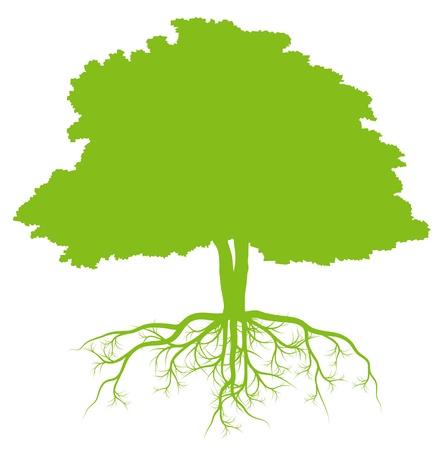 Árbol con raíces concepto de vectores de fondo ecología