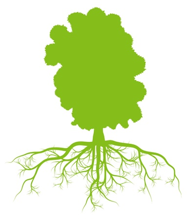 Tree with roots background ecology vector concept Stock Vector - 18580987