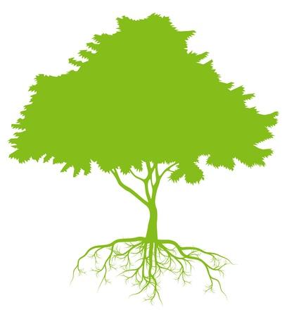 albero stilizzato: Albero con radici concetto di ecologia vettoriale sfondo