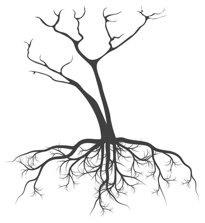 dead tree: Dead tree with roots vector background black concept