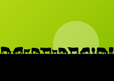 Beef cattle and milk cow herd in countryside field landscape illustration background vector Vector