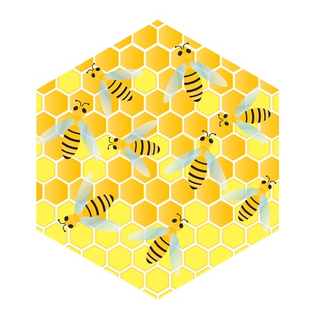 mead: Bees and honeycomb wax cell vector background illustration