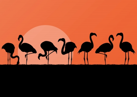 lake sunset: Flamingo silhuettes in sunset landscape illustration background vector