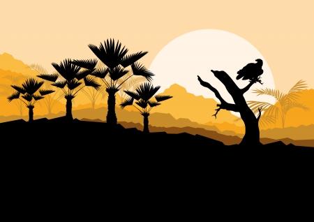 birds desert: Desert wild nature landscape with cactus, palm tree plants and vulture bird in illustration background vector