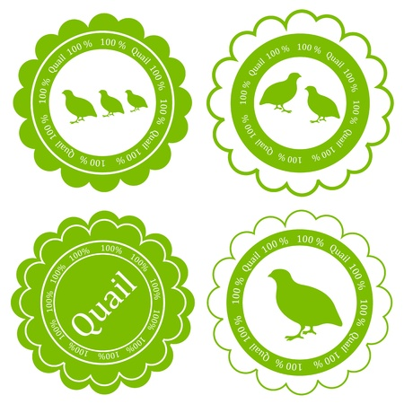 Quail meat vector background label stamp green farm ecology concept Imagens - 18580957