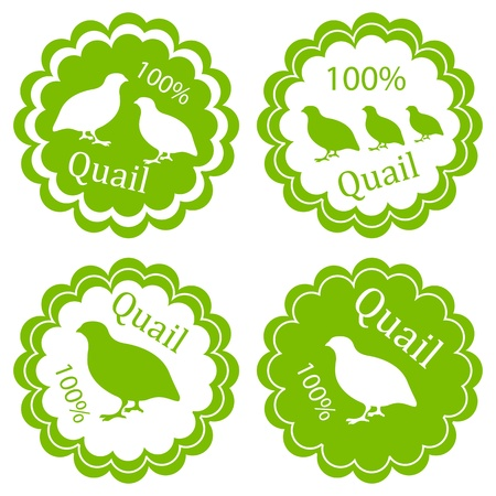 Quail meat vector background label stamp green farm ecology concept Vector